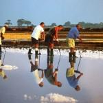Recolectores de sal en Infersa