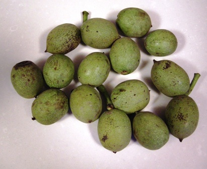 Las nueces verdes
