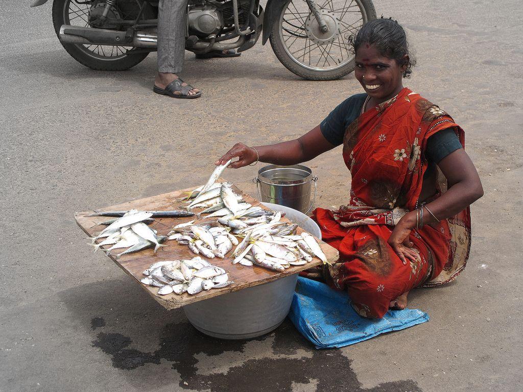 Mercado de pescado  en Chennai, Fotografia Paola Pasquali  (1)